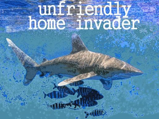 0unfriendly