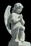 ANGEL (132)