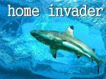 ohome.invader