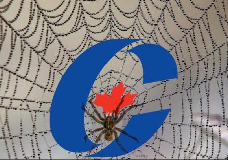 harperspiderweb