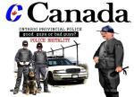 Ontario police farce (6)