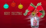 best-Christmas  (13)