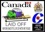 Canadian Cartoons 1 (10)