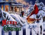 merry christmas (4)