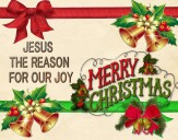 merry christmas (7)