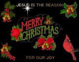 merry christmas (9)