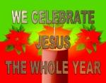 BIBLE VERSED (15)